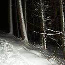 Snow  by Elissa  .