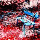 Park paradise by Riko2us