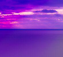 Lilac Dreams by Lyndy