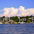 Lake Union from GasWorks Park by Mike Cressy