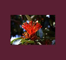 Tree Waratah Flower Unisex T-Shirt