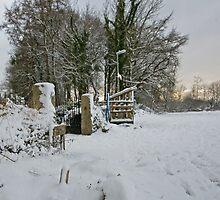Snow Scene Yelverton, Dartmoor by DIANE  FIFIELD