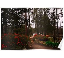 Cypress Gardens - Late Afternoon Poster