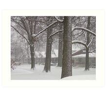 Snowy Sherry Art Print