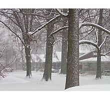 Snowy Sherry Photographic Print