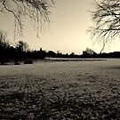 A Winter Plain by KChisnall