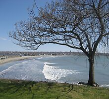 Easter in Newport by Cawritergirl