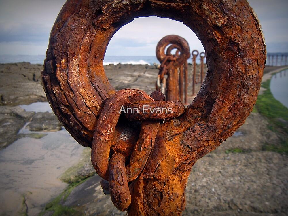 Looking Through by Ann Evans
