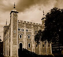 Tower of London by Gursimran Sibia