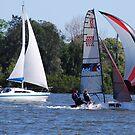 Racing dinghy beats trailer sailer by Graham Mewburn