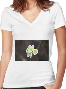 Painted Blossoms Women's Fitted V-Neck T-Shirt