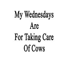 My Wednesdays Are For Taking Care Of Cows  Photographic Print