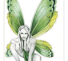 The Green Fairy by Nicola McIntosh
