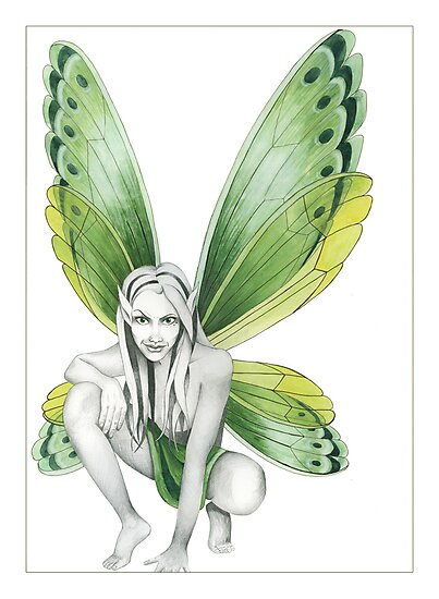 The Green Fairy by Nicola McIntosh