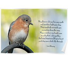 Bluebird and Blessing  Poster