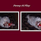 Penny At Play by artsthrufotos