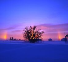 Winter Rainbow by maragoldlady