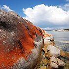 Red Rocks - Tasmania by Andy Sinclair