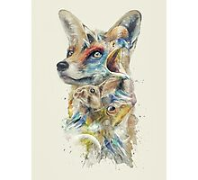 Heroes of Lylat Starfox Inspired Classy Geek Painting Photographic Print