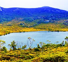 Tasmania - Lilla lake at Cradle Mountain by Geoffrey Thomas
