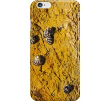 Ocean Rock 1 iPhone Case/Skin
