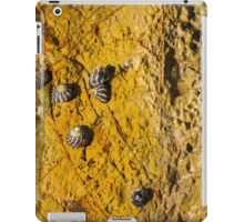 Ocean Rock 1 iPad Case/Skin