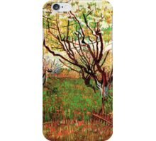 Vincent van Gogh, Orchard in Blossom iPhone Case/Skin