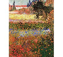 Flowering Garden. Vintage floral garden oil painting by Vincent van Gogh. Photographic Print