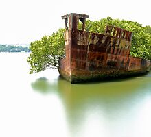 Mariner's Cove Shipwreck Homebush Bay - Colour by DavidIori