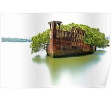 Mariner's Cove Shipwreck Homebush Bay - Colour Poster