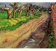 Pollard Willows by Vincent van Gogh. Rural, country road landscape oil painting. Photographic Print