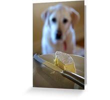 More Cheeeeeese Grommit...! Greeting Card