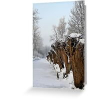THE WILLOW LINE UP Greeting Card