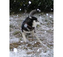 Snowstorming Photographic Print