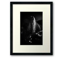 MR Adam winzer Framed Print
