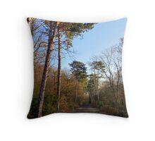 Sunny Winter Woodland  Throw Pillow