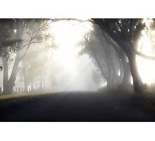 ~ Lighten Up ~  Photographic Print