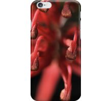 Natures Fireworks iPhone Case/Skin