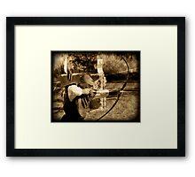 ~ The Archer ~ Framed Print