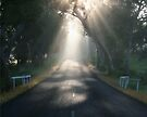 The Road to Enlightenment by LeeoPhotography