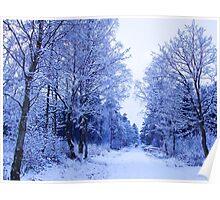 Winter Wonderland Walk - No. 3 Poster