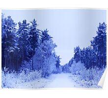 Winter Wonderland Walk - No. 4 Poster