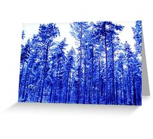 Snowy Blue Trees Greeting Card