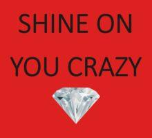 Pink Floyd - Shine On You Crazy Diamond by lyricalshirts