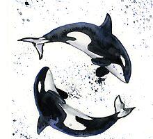 Orcas by priscilla george