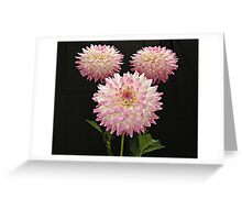 Pink Winners Greeting Card