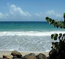 Diamant Beach - Martinique, FWI by Olivia Son