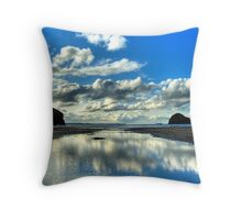 Reflections Gull Rock Throw Pillow