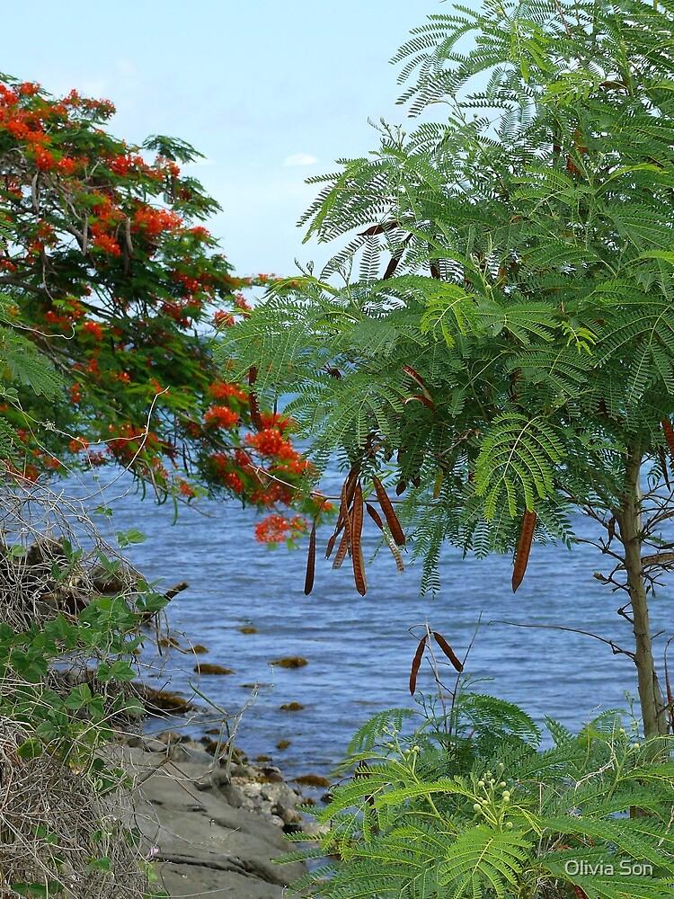 Sea - Martinique, FWI by Olivia Son