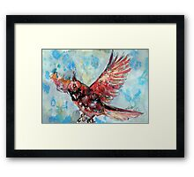 Flying cardinal Framed Print